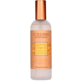 Parfum d'intérieur safran gingembre 100ml 716269