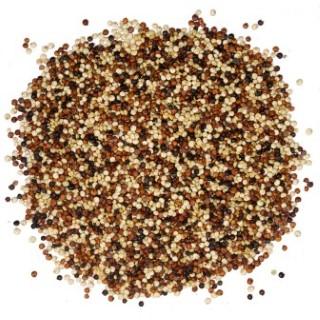 Trio de quinoa bio en sac de papier kraft Primeal - 5 kg 738653