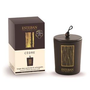 Bougie parfumée déco cèdre rechargeable 170 g 738764