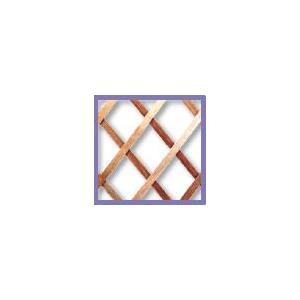 Treillis extérieur Treilliwood, en bois naturel, 100 x 200 cm 784749