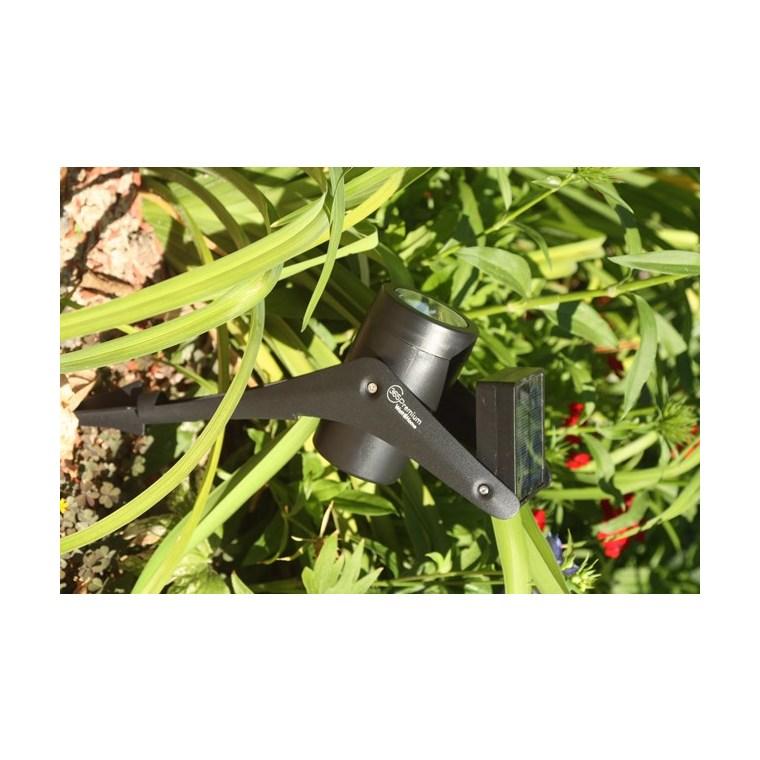 Spot 365 premium 50 lumens métal noir H 32 cm 700707