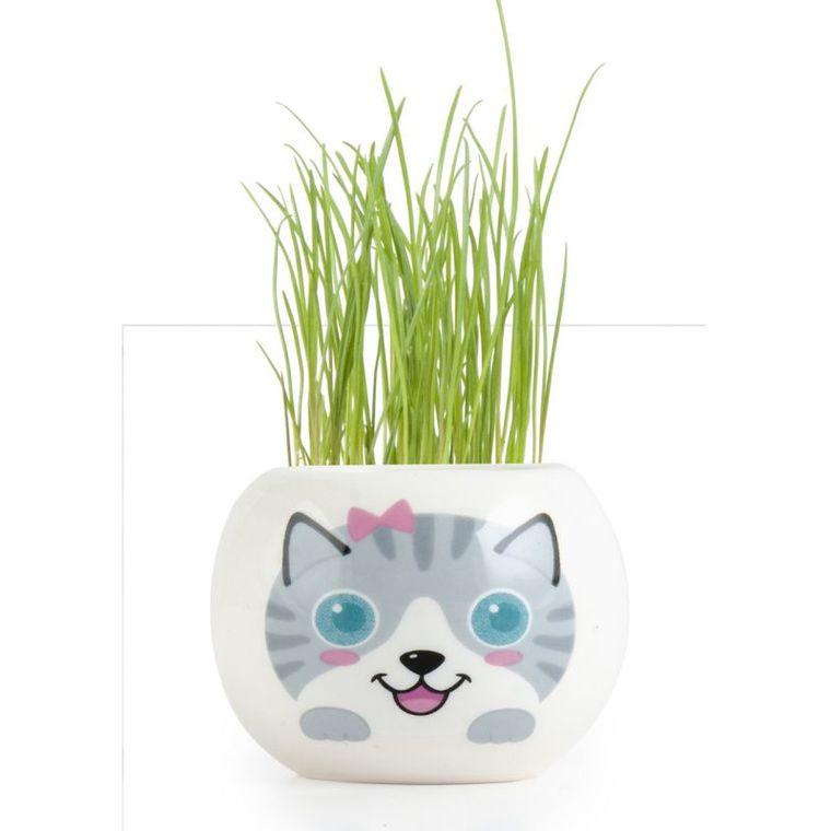 Kit prêt à semer en pot blanc décor Chat gris 703024
