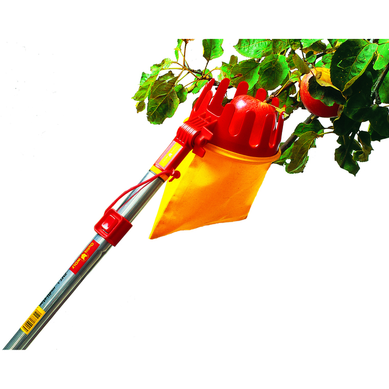 Cueille-fruits coloris jaune 781977