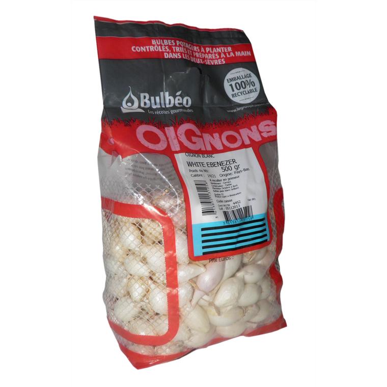 Bulbes d'oignons blanc White Ebenezer calibre 14/21, 500 g 809123