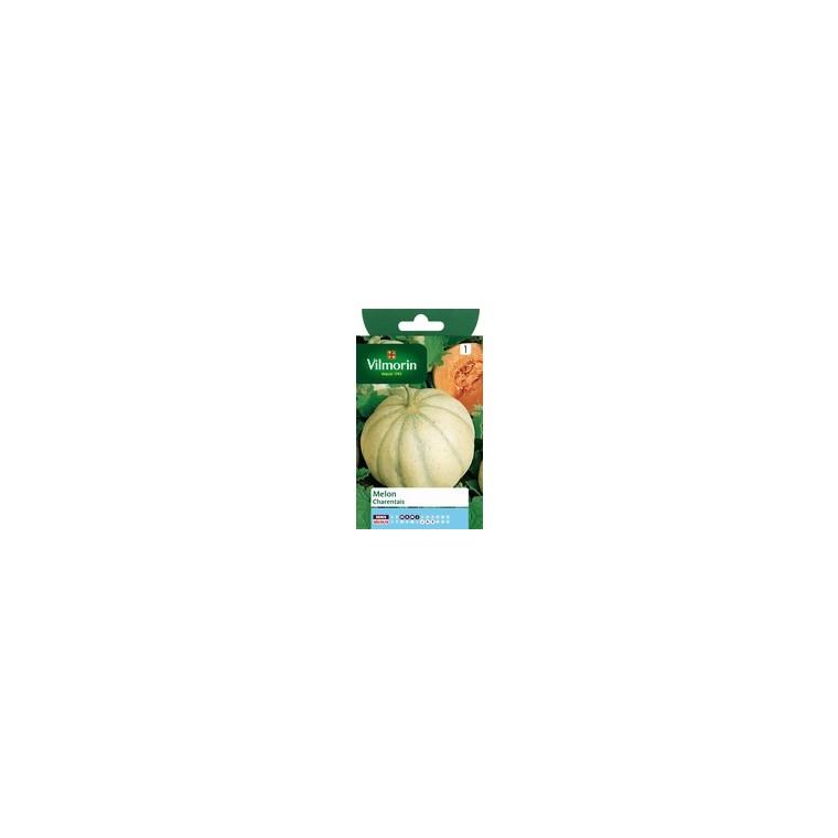 Melon charentais 823812