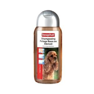 Shampooing pelage roux chiens BeapharŽ
