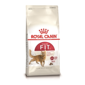 Croquette 10kg chat Fit Royal Canin 915660