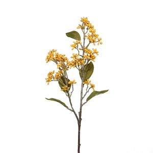 Magnolia (MAGNOLIA GRANDIFLORA GOLIATH) Le pot de 18 litres 494284