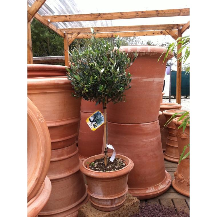 Pot Toscane classic en terre cuite naturelle H 39 x Ø 48 cm 966909