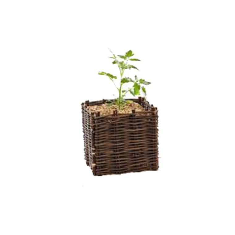 Tour en osier pour tomates 976157