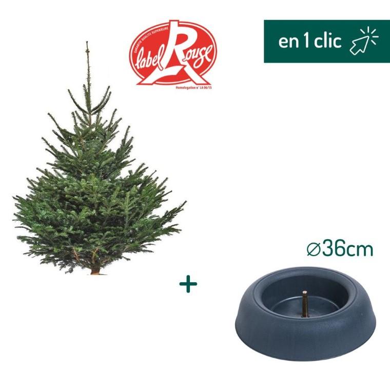 Lot sapin Nordmann coupé Label Rouge 125/150cm + support à réserve d'eau FRESCHER TREE® Ø36cm L000172