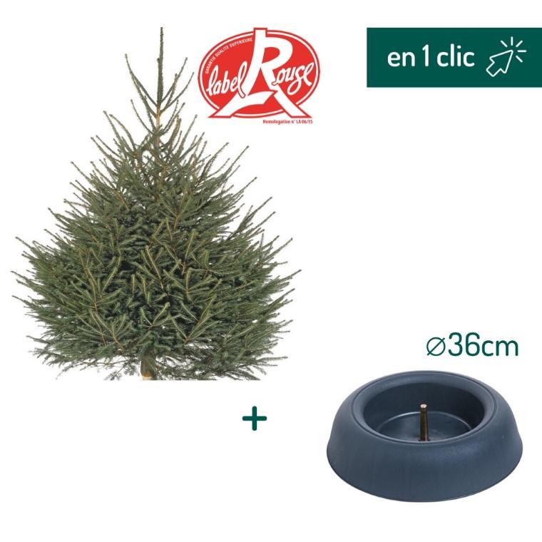 Lot sapin Picea Excelsa coupé Label Rouge 125/150cm + support à réserve d'eau FRESCHER TREE® Ø36cm L000178