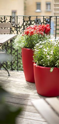 fleurir son balcon conseil balcon terrasse botanic botanic. Black Bedroom Furniture Sets. Home Design Ideas