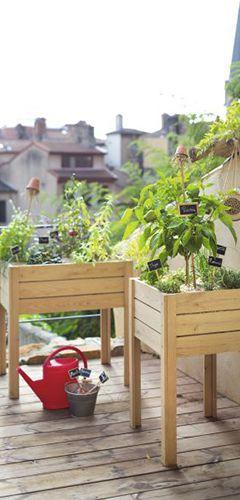 terreaux et fertilisants pour votre potager en bac conseil jardin botanic botanic. Black Bedroom Furniture Sets. Home Design Ideas
