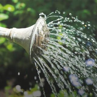 BlocConseil_economiser-l-eau