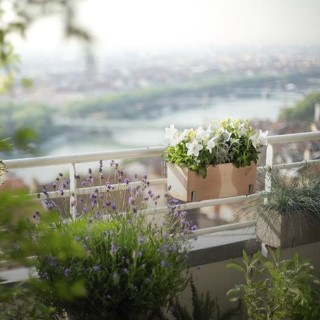 BlocConseil_la-bonne-humeur-s-invite-au-balcon