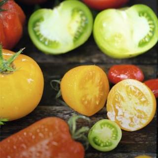 BlocConseil_les-tomates-rougir-de-plaisir