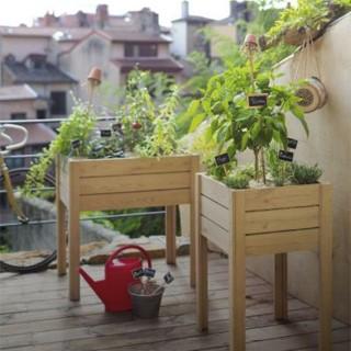 Terreaux et fertilisants pour votre potager en bac