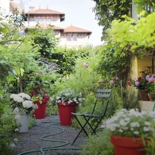 D coration du jardin am nagement du jardin et jardin - Decoration de terrasse avec pots de fleurs ...