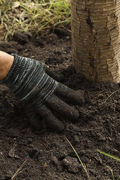Comment reconnaître le type de sol