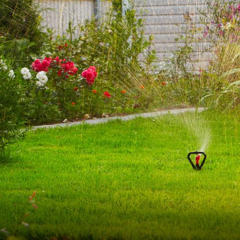 que-faire-dans-un-jardin-a-partir-de-rien_BlocConseil