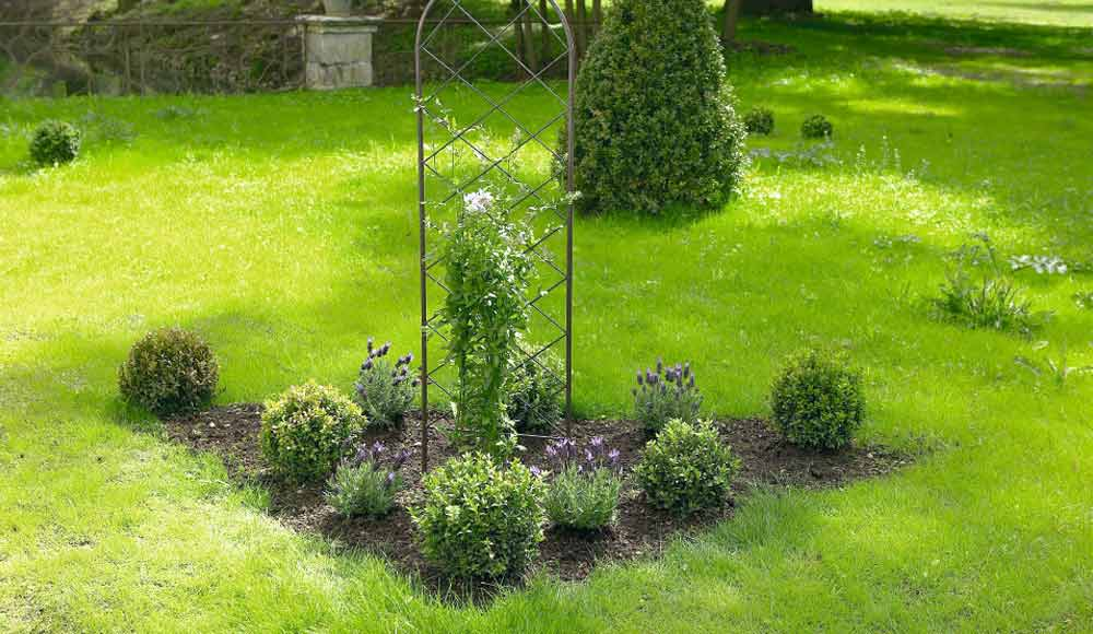 Conseils jardin astuces et conseils jardin botanic botanic for Conseil plantation jardin