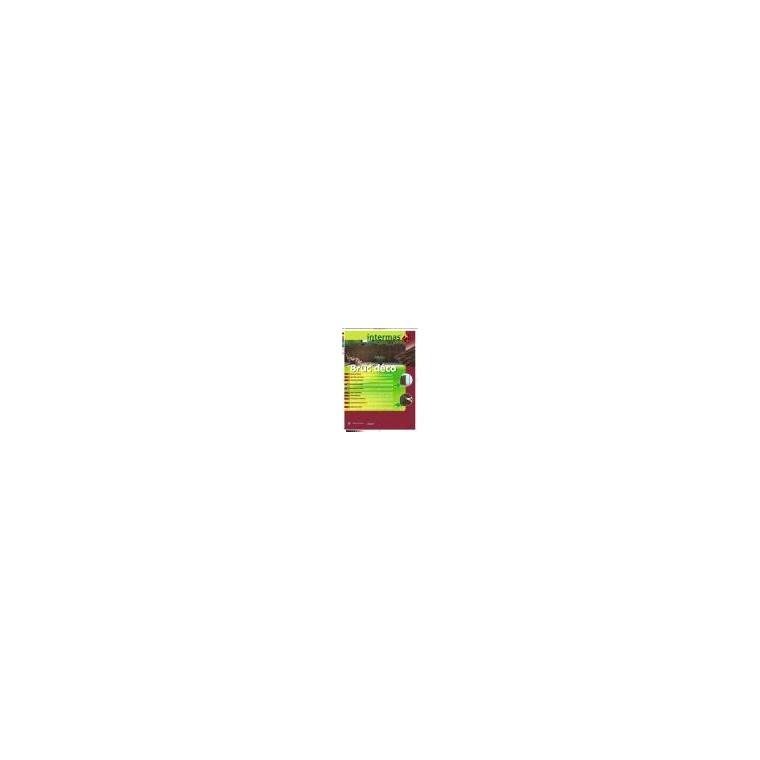 Lot de 20 clips Fixatex vert, 34 x 20 cm