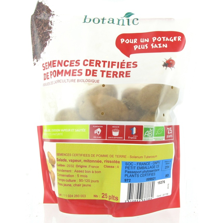 25 plants de pommes de terre allians bio calibre 0001