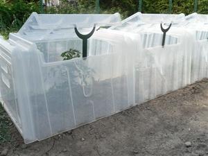 tunnel de culture serres et protection des cultures pouss 39 vert potager botanic. Black Bedroom Furniture Sets. Home Design Ideas