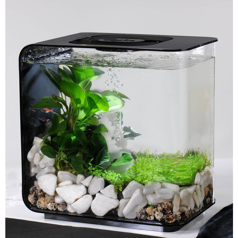 D coration aquarium 15l for Bac a poisson jardiland