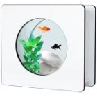 Aquarium Nano Fashion Vision 1 Dennerlé bois blanc
