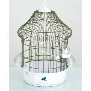 Cage Lolita