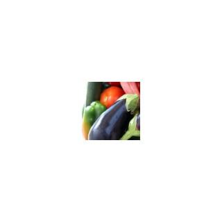 MELANGE RATATOUILLE POIVRON AUBERGINE COURGETTE.La barquette de 3 plants