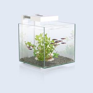 Aquarium Nexus LED 14L blanc