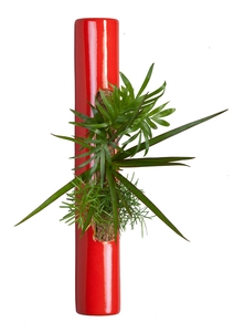 COMPOSITION TUBE ROUGE