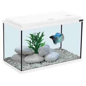 Aquarium 40x20x25 cm blanc 20L 130369