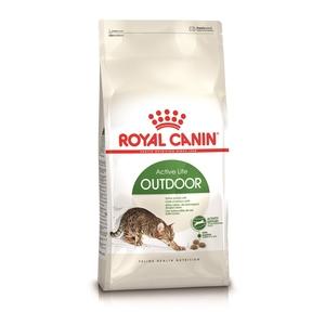 Croquette 2kg chat actif Royal Canin 138988