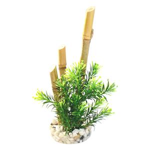 Bambou plantes