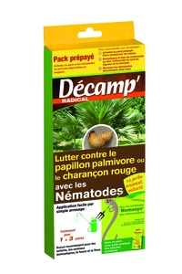 Nématodes traitement biologique contre les papillons palmivores