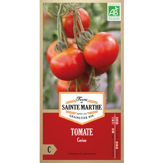 Tomate Cerise 162937