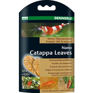 Nano feuilles de Catappa 168031