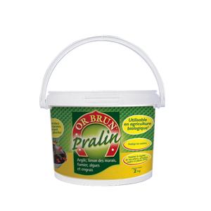 Pralin OR BRUN® 2Kg