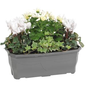 Jardinière d'automne. La jardinière de 40 cm