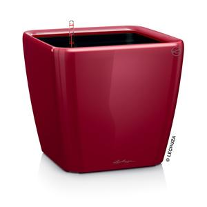 Pot à réserve d'eau Quadro Rouge scarlet L.21x21 x H.20 cm 197986