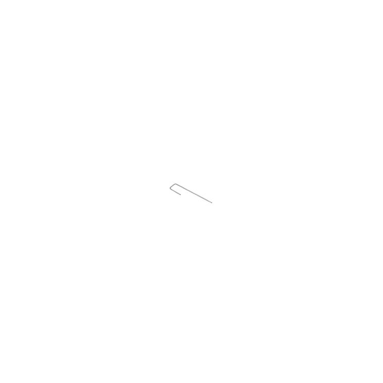 Agrafes gazon x20 105062