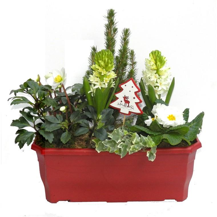 Jardinière de Noël 40 cm. La jardinière de 40 cm 115876