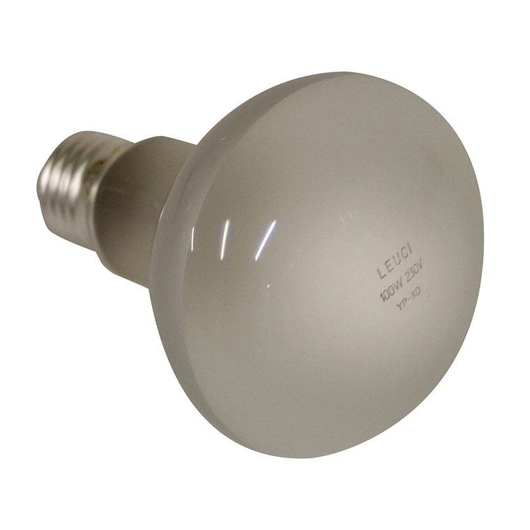 Lampe blanche pour réflecteur REFLECT CIP 100 W 120193