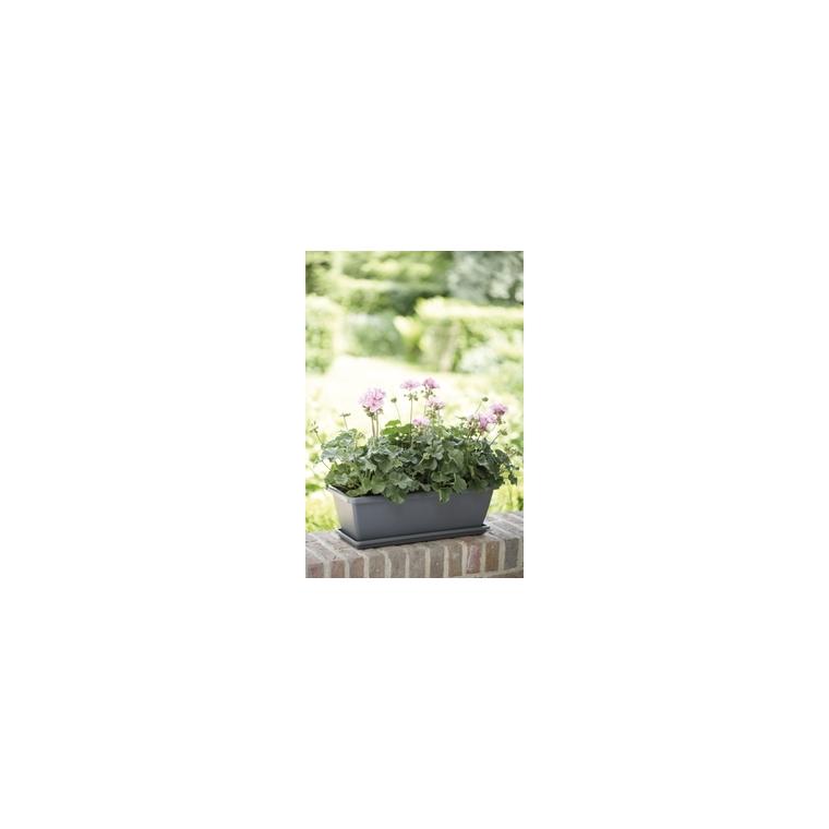 Jardinière 50cm Barcelona Elho anthracite 165196