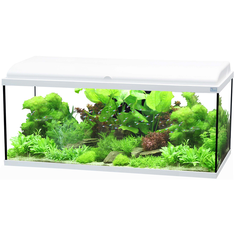 Aquarium Aquadream 100 115L LED Blanc 100x30x45 cm 189042