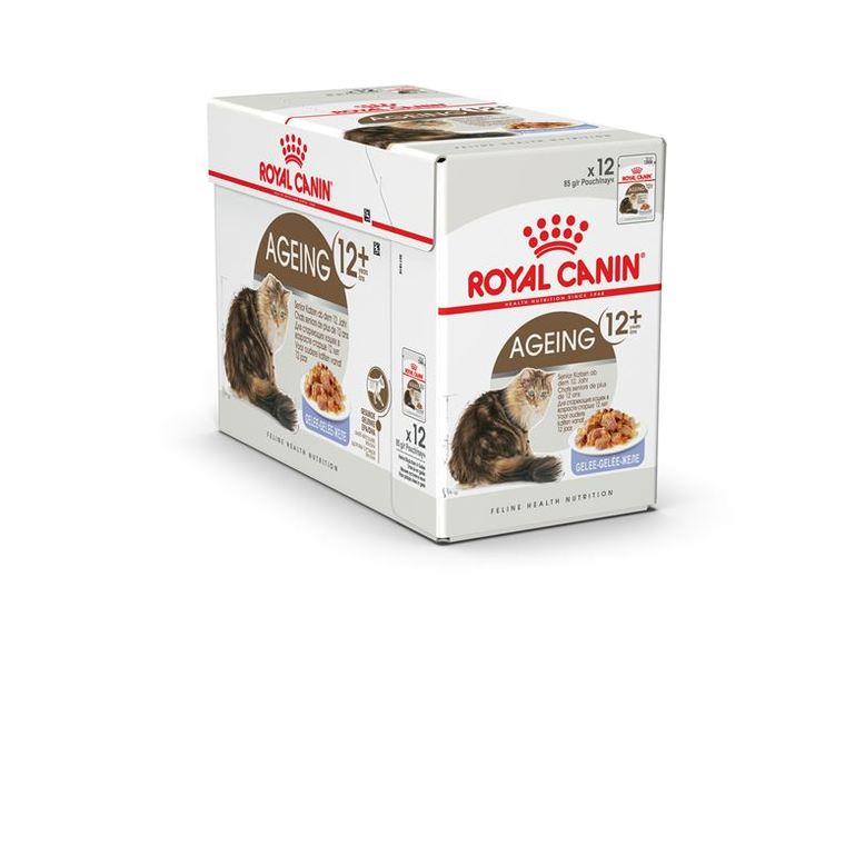 Sachets Royal Canin Ageing +12 jelly 12x85 g
